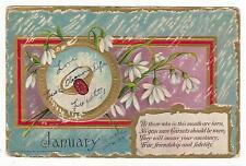 JANUARY BIRTHSTONE-GARNETS POSTCARD 1907