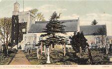 POSTCARD  HAMPSHIRE   BISHOP'S  WALTHAM    St  Peter's  Church