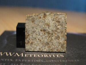 Meteorite Hammadah al Hamra 173 - Lybian chondrite (L6) - Found 1996
