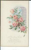 AY-233 - Asheville Post Card Company Sales Sample 1907-1915 Advertising Postcard