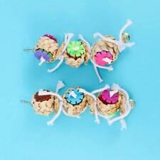 Pet Bird Toys Parrot Toys Swing Parrot Cage Pet Bird Ball Hanging Parakeet
