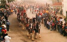 Lilac Festival Mackinac Island Budweiser Clydesdale Beer Wagon Michigan Postcard