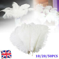 10/20/50pcs Large Ostrich Feathers Costume Wedding Party Decorations 25cm -35cm