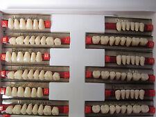 1 Set Dental False Tooth Synthetic Resin Teeth Denture A2 color 84pcs 438# Size