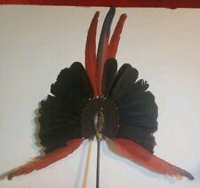 Vintage Original Kayapo Feather Headdress  Indigenous People Headpiece