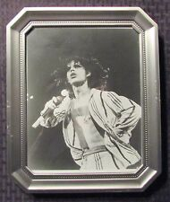 """Rolling Stones Mick Jagger w/ Mic / Striped Shirt 8x10"""" Standee Framed Picture"""