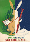 Ski Rabbit Day or Night Colorado Skiing Winter Sport Vintage Poster Repo FREE SH