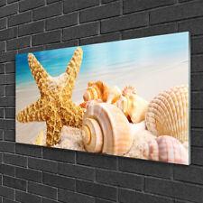 Acrylglasbilder 100x50 Wandbild Druck Seestern Muscheln Kunst