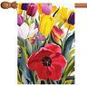 Toland Tulip Garden 28 x 40 Colorful Spring Summer Flower House Flag