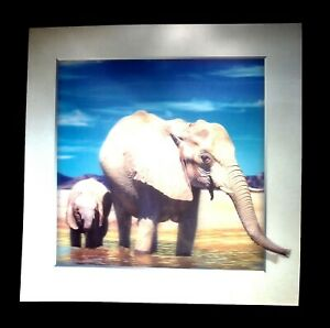 elephant African animal 5D Lenticular  Holographic Stereoscopic Picture Wall Art