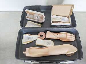 Laerdal IV Arm & Hand Blood Phlebotomy Nursing Simulator Trainer Manikin w/ Case