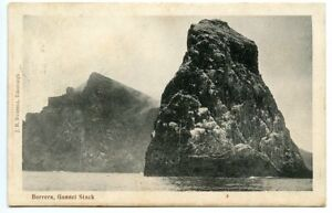 "c. 1904 postcard ST KILDA c.d.s. on KEVII ½d ""BORRERA, GANNET STACK"""