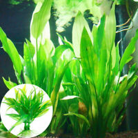 Lifelike Water Grass Fish Tank Aquarium Plastic Plant Landscape Decor Ornam D0N0
