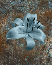 Rustic Blue Brown Floral Home Decor Wall Art Bathroom Bedroom Matted Picture