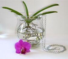 Orchidee Spiral-Korb zum Aufhängen für Vanda Orchid Cattleya Blumentopf Körbchen