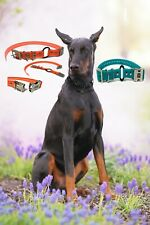 """3/4"""" Waterproof Biothane Double Buckle E Collar Receiver Strap- 7 Colors"""