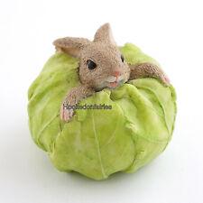 Rabbit Stuck in Cabbage # 4430 Bunny Dollhouse Miniature Fairy Gnome  Garden