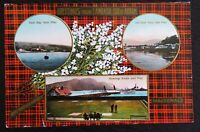 Vintage Postcard -GREETINGS FROM LAMLASH - White Heather on MacDonald Tartan