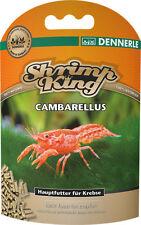 Shrimp King Cambarellus - Food for Crayfish