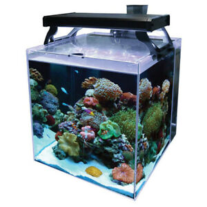 Aqua One NanoReef 35 Marine Aquarium LED & Skimmer Heater Fish Tank NEXT DAY UK