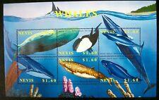 2002 Mnh Nevis Whales Stamps Sheet Minke Fin Whale Sperm Whale Marine Sealife