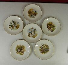 Lot of 6 Royal Falcon Ware Weatherby Hanley England Plates