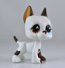 #577 Rare Littlest Pet Shop White & Brown Great Dane DOG Puppy Blue Eye LPS