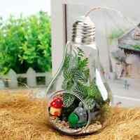Small Stand/Hanging Light Bulb Glass Vase Terrarium Container Landscape Bottle U