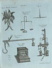 1783 ORIGINAL PRINT ATROPA MANDRAGORA MANDRAKE ROMAN BALANCE SCALES HYDROSTATIC