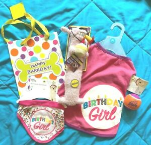 NEW PINK GIRL Dog Birthday SET med SHIRT & BANDANA & LOOFA dog toy & KONG BALL +
