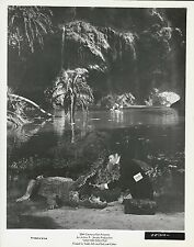 """Rex Harrison in """"Doctor Dolittle""""  1967  Vintage Movie Still"""