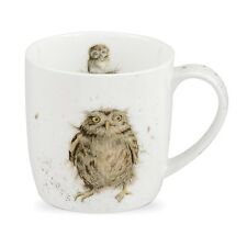 Royal Worcester What a Hoot Owl Taza Bone China wrendale País Naturaleza Bird De Regalo
