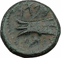 ARADOS in PHOENICIA 185BC Zeus Galley Ship Authentic Ancient Greek Coin i45060