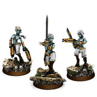 Wargame Exclusive - Greater Good Widows of Vengeance Squad