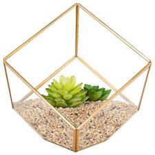 Geometric Glass Flower Pot DIY Terrarium Container Tealight Candle Holder #3