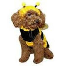 Bumble Bee Dog Costume by Anit Accessories ~ Size XS