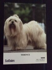 Terence The Dog EASTENDERS  -cast Card Rare ❤️