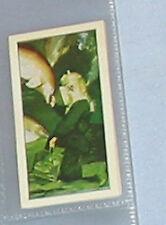 #15 sea-quarium vet-trade card