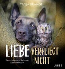 Liebe verfliegt nicht von Tanja Brandt (28.09.2018, HC)