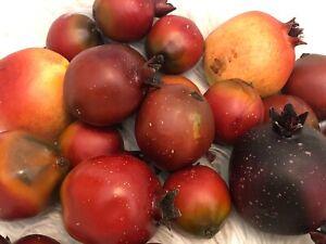 Lot/21 Artificial Fake Fruit Red Orange Faux Pomegranates Simulation Table Decor