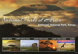 Sierra Leone Elephants Stamps 2015 MNH National Parks Africa Amboseli 4v M/S I