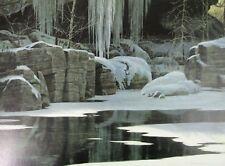 Robert Bateman Art Print Kopje Lookout Leopard 1999 Winter Reflection Wolf 2006