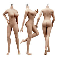 1/6 Seamless Female Action Figure Body for Hot Toys HT Phicen Head Sculpt Suntan