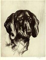 1930s Antique DACHSHUND Art Print Nicholson Dachshund Dog Art 3890e