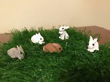 Ooak Polymer Clay Fairy Garden Rabbit Dollhouse 1:12 Scale