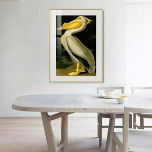 "28""x40""Framed Canvas Giclee Print Art by John James Audubon Wall Art Home Decor"