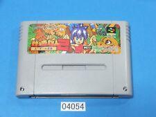 USED Joe and Mac 2 Congo's Caper SNES Nintendo Super Famicom SFC Japan 04054