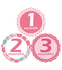 2 different MuchMore Baby Monthly Stickers Twins prop Miestones Keepsake Pink