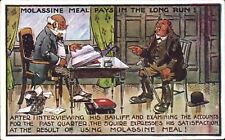 Advertising. Molassine Cattle Meal/Dog Food. Bailiff & Accounts.