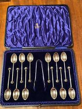 Antique Cased Set Of 12 Silver Dandie Dinmont Terrier Dog Show Spoons 1915